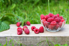 Red raspberries in bowl on wooden and grass background Royalty Free Stock Photos