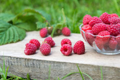 Red raspberries in bowl on wooden and grass background Royalty Free Stock Photography