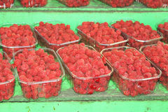 Red raspberries in boxes  ready for sale at the market. Light sweet tasty Red raspberries sold in the market on a sunny summer day Royalty Free Stock Photography
