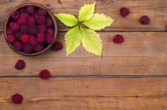 Red raspberries in a clay dish on a wooden background, free spac. E. Berries on a wooden table, top view Royalty Free Stock Photos