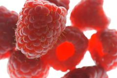 Red raspberries close up Stock Photography