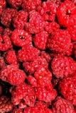 Red raspberries. Detail of fresh red raspberries Stock Images
