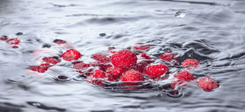 Red Raspberries Dropped into Water with Splash. Closeup Stock Photo