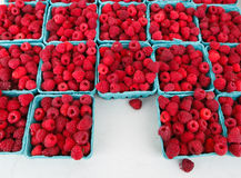 Red Raspberries Fruit Produce Royalty Free Stock Photos