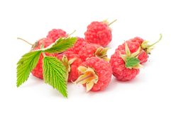 Red Raspberries with Green Leaf Royalty Free Stock Images
