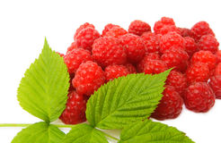 Red raspberries with leaves. Raspberries with leaves on white Royalty Free Stock Image