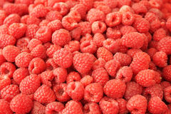 Red raspberries. Light sweet tasty Red raspberries sold in the market Stock Photos