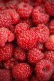Red raspberries. Macro shot of Ripe red raspberries Royalty Free Stock Photography
