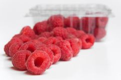 Red raspberries in plastic container Stock Photos