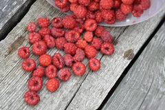 Red raspberries scattered on a wooden surface Stock Photography