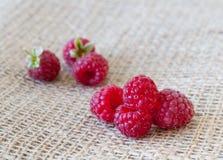 Red raspberries Royalty Free Stock Image