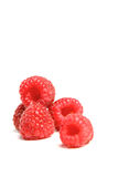 Red raspberries. On white background Royalty Free Stock Images