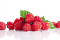 Red Raspberries White Background Stock Photo