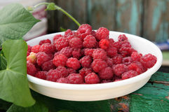 Red raspberries on a white plate Royalty Free Stock Image