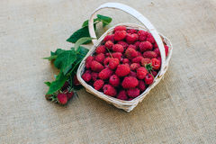 Red raspberries in a wooden basket. Red forest raspberries in a wooden basket Stock Photo