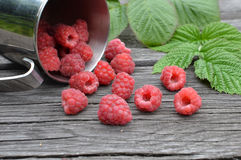 Red raspberries on a wooden board Stock Photo