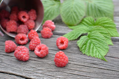 Red raspberries on a wooden board Stock Photography