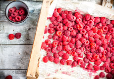 Red raspberries in a wooden box and a metal mug, top view. Fresh red raspberries in a wooden box and a metal mug, top view,raw healthy food Stock Photos