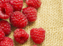 Red raspberry Royalty Free Stock Image