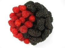 Red raspberry and dark mulberry. Yin Yang Stock Photo