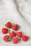 Red raspberry in front of white fabric on old vintage wooden tabl Royalty Free Stock Photo