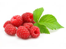 Red raspberry fruits isolated royalty free stock photos