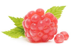 Red raspberry fruits Royalty Free Stock Image