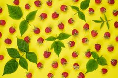 Red raspberry and green leaves on yellow background, top view royalty free stock images