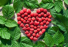 Red Raspberry Heart with green leaves royalty free stock photos