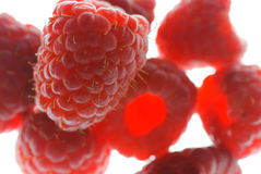 Red Raspberry Macro Royalty Free Stock Image