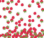 Red Raspberry pattern Royalty Free Stock Photo