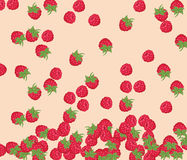 Red Raspberry pattern Royalty Free Stock Photos