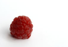 Red raspberry Stock Image