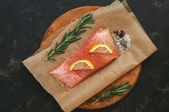 Red raw fish with spices and rosemary on parchment paper. View from above. Red raw fish with spices and rosemary on parchment paper. View from above Royalty Free Stock Photos
