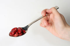 Red raw haricot on spoon stock images