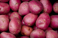 Red raw sweet potatoes. A pile of fresh vegetables is on the stall in the store Royalty Free Stock Photos