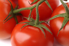 Red raw tomatoes on branch closeup Stock Photo
