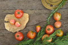 Red raw tomatoes Royalty Free Stock Images