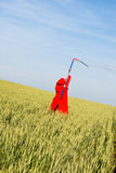 Red reaper series Stock Photography
