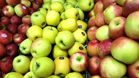 Red and red and green apples. Crispy fresh red and green apples piled high in market Royalty Free Stock Images