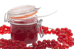 Red redcurrant jam Stock Photography