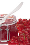 Red redcurrant jam Royalty Free Stock Images