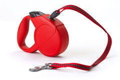Red retractable leash stock photo