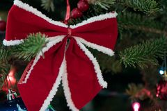 Red bow on the Christmas tree. Red ribbon bow on the Christmas tree Royalty Free Stock Photography