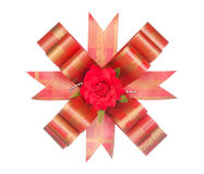 Red ribbon bow with red flower isolated on white Royalty Free Stock Photos