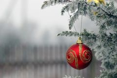 Red ribbon on the Christmas tree with snow. Red ball on the Christmas tree with snow stock photography