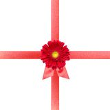 Red ribbon with flower on white card Royalty Free Stock Image