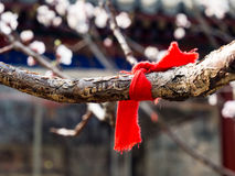 Red ribbon for good luck Stock Images