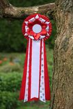 Red ribbon with paw print Royalty Free Stock Images