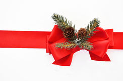 Red ribbon and pine decoration Stock Image